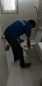 toilet deep cleaning